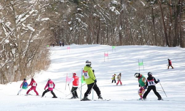 アルペンスキー・スノーボード競技会を開催しました。